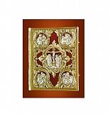 Evanghelie Argintata Catifea Rosie